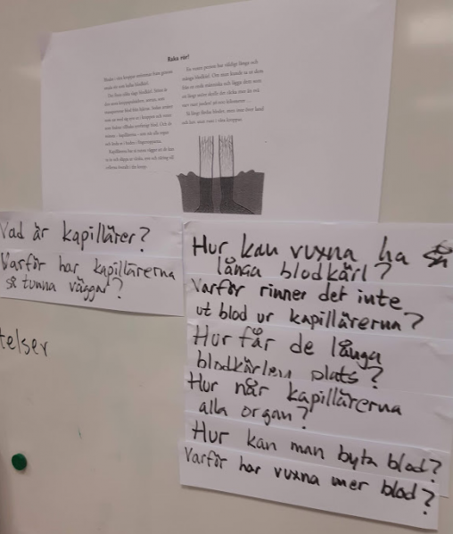 Elevers frågor BLOD